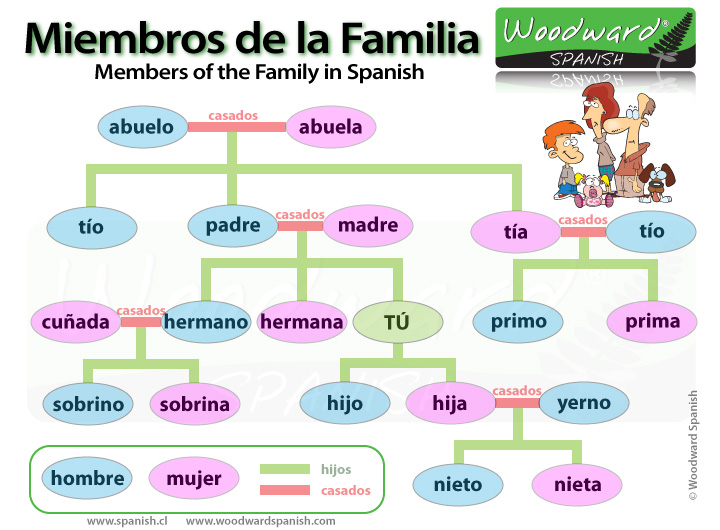 La Familia Spanish Family Tree