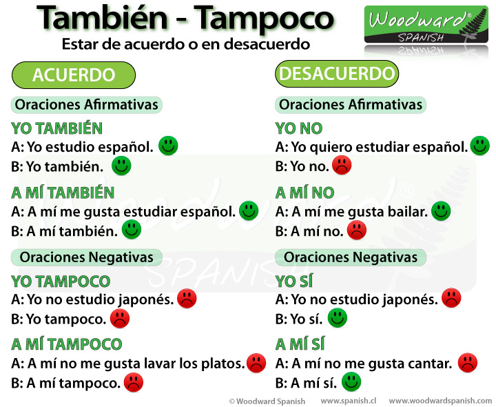 The difference between También and Tampoco in Spanish